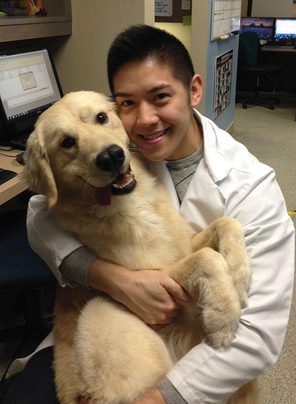 animals-at-vet-clinic09